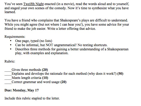 essay on twelfth night and shes the man